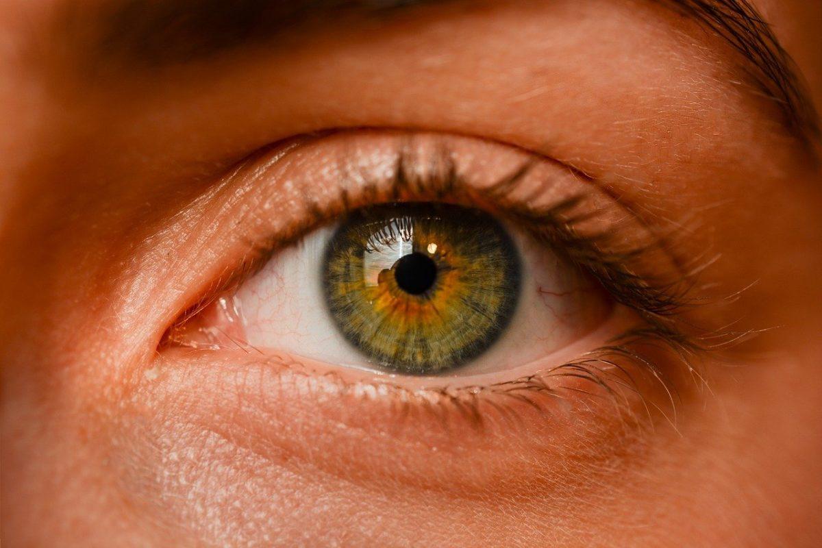 Oczy to szczególny organ. To dokładnie dzięki nim rozróżniamy.